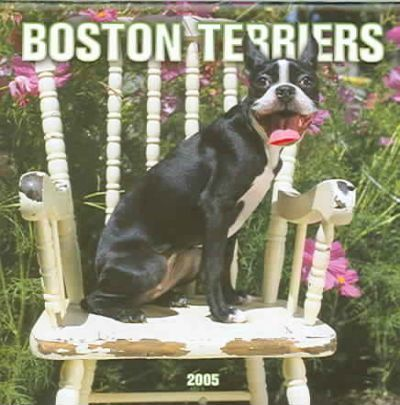 Boston Terriers Mini 2005 Calendar