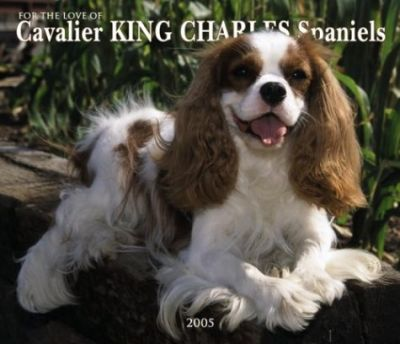 Cavalier King Charles Spaniels, for the Love of Deluxe Wall