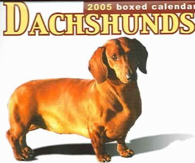 Dachshunds 2005 Boxed Calendar