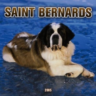 Saint Bernards Wall