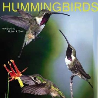 Hummingbirds 2006 Calendar