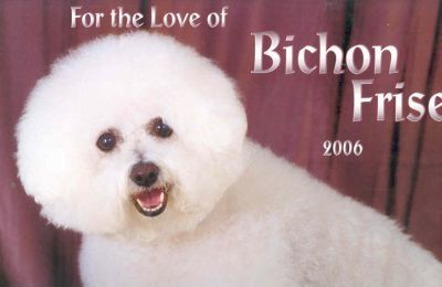 For The Love Of Bichon Frise Deluxe 2006 Calendar