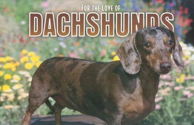 For The Love Of Dachshunds 2006 Calendar