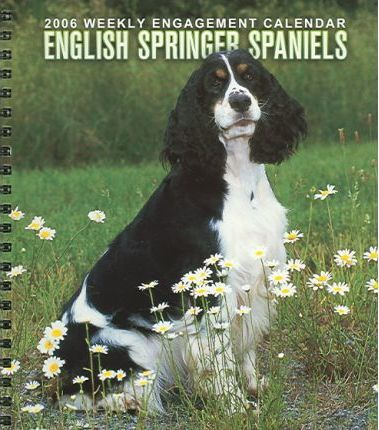 English Springer Spaniels Weekly 2006 Calendar