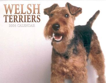 Welsh Terriers 2006 Calendar