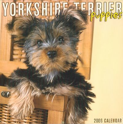 Yorkshire Terrier Puppies 2006 Calendar