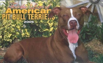 For The Love Of American Pit Bull Terriers Deluxe 2006 Calendar