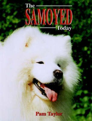 The Samoyed Today