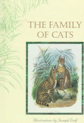 The Family of Cats
