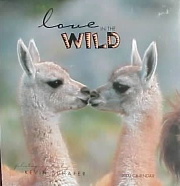 Love in the Wild: 2000 Wall Calendar