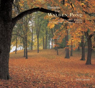 Thoughts from Walden Pond