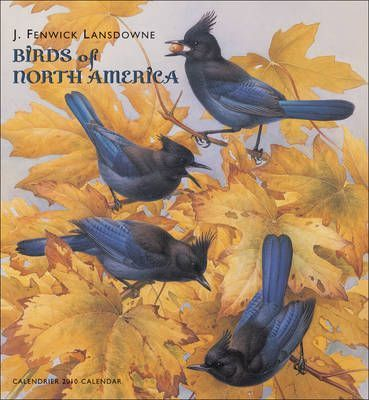 Lansdowne/Birds of North America
