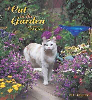 A Cat in the Garden, 2011