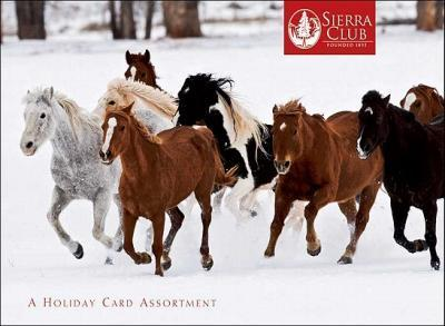 Horses of Winter Holiday Cards