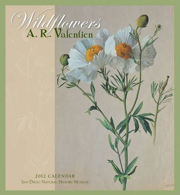A. R. Valentien: Wildflowers, 2012