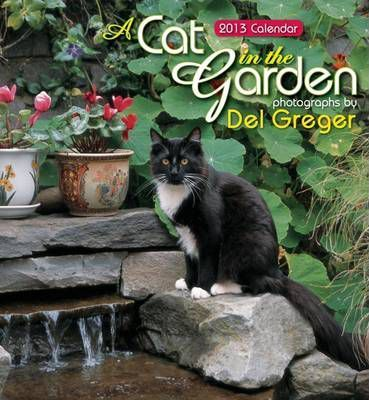 A Cat in the Garden, 2013