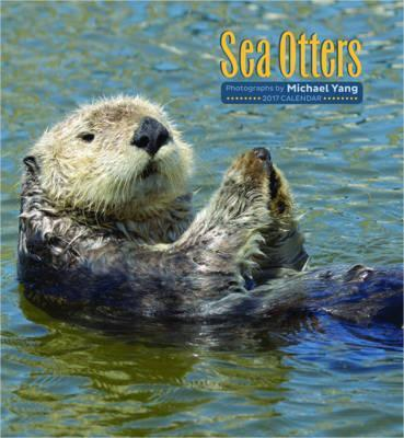 Sea Otters 2017 Wall Calendar