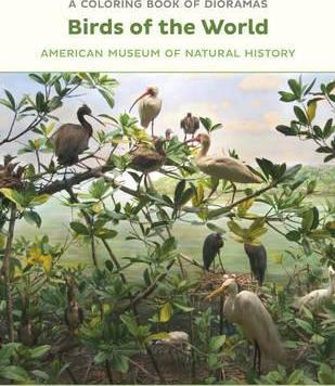 Birds of the World Dioramas Coloring Book Cb185