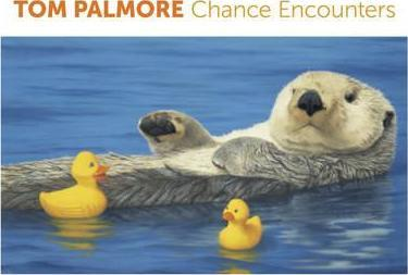 Tom Palmore Chance Encounters Boxed Notecards 0524
