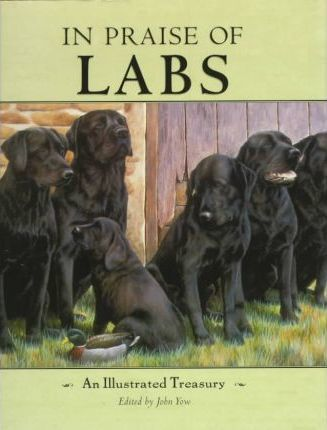 In Praise of Labs