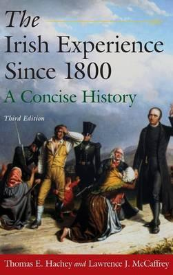 The Irish Experience Since 1800: A Concise History