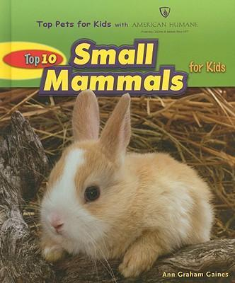 Top 10 Small Mammals for Kids