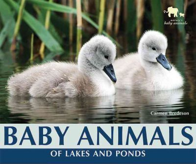 Baby Animals of Lakes and Ponds