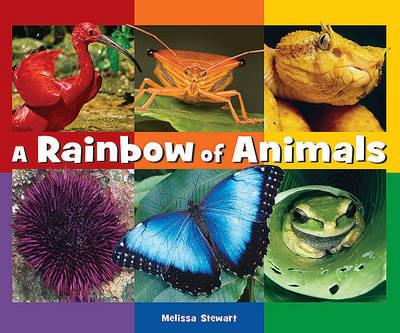 A Rainbow of Animals
