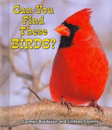 Can You Find These Birds?