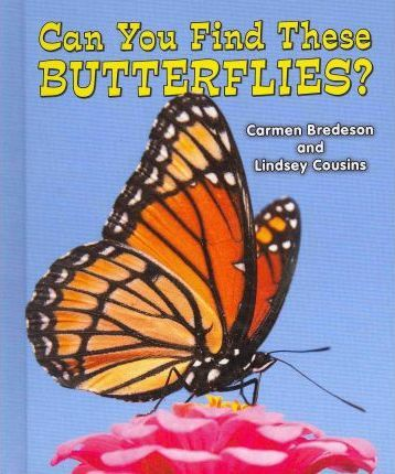 Can You Find These Butterflies?