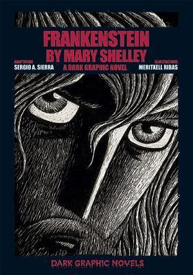 Frankenstein by Mary Shelley  A Dark Graphic Novel