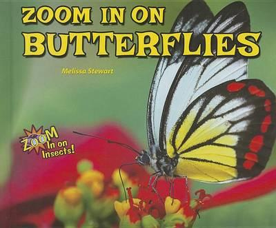 Zoom in on Butterflies