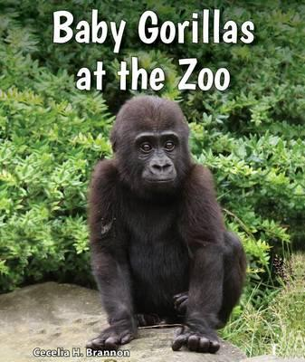 Baby Gorillas at the Zoo