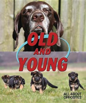 Old and Young