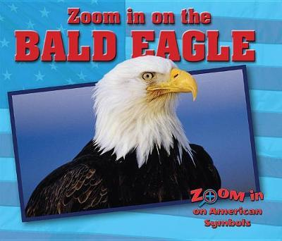 Zoom in on the Bald Eagle