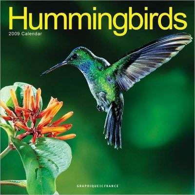 Hummingbirds 2009 Calendar