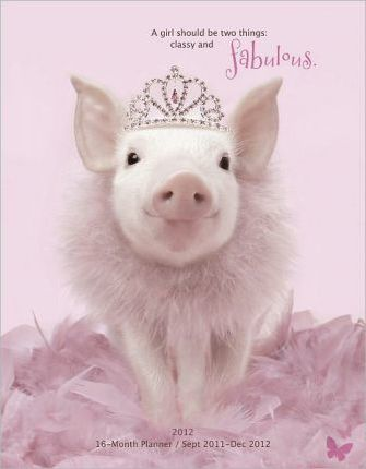 In the Pink Princess 2012 Calendar