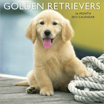 Golden Retrievers 2013 Calendars