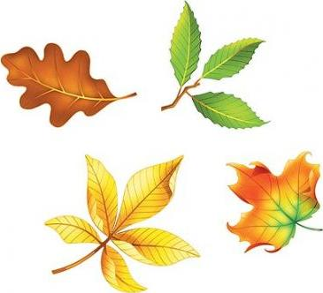 Fall Leaves Shape Stickers