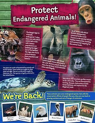 Protect Endangered Animals! Cheap Chart