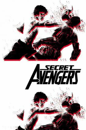 Secret Avengers: Run the Mission, Don't Get Caught, Save the World. Vol. 3