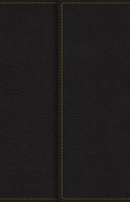 KJV, Reference Bible, Compact, Large Print, Snapflap Leather