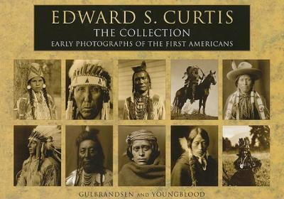 Indigenous People S History Of The United States Publication City