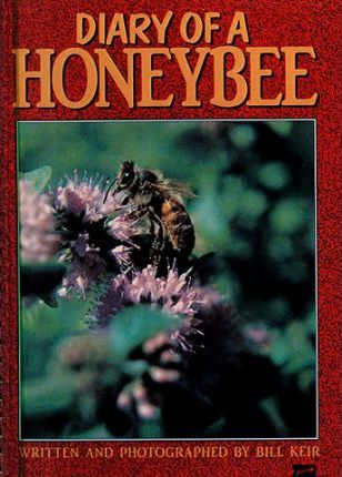 The Diary of the Honeybee: Creative Solutions