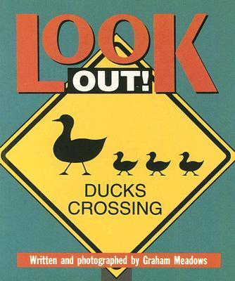 Look Out (Sat Sml USA)
