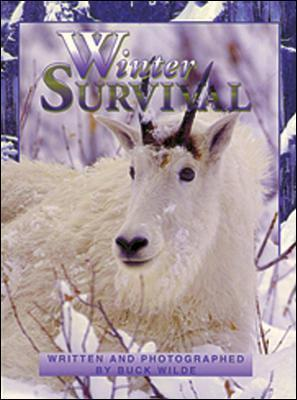 Winter Survival: Wild and Wonderful