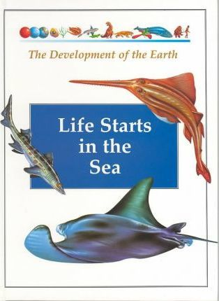 Life Starts in the Sea