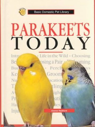 Parakeets Today