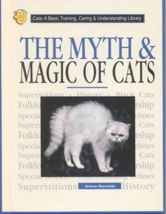 The Myth & Magic of Cats(oop)