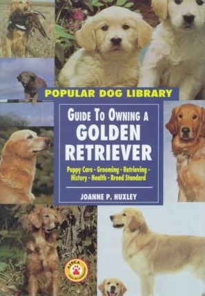 Golden Retriever(oop)